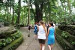 Pengunjung Di Monkey Forest Ubud