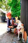 Legolas - Juara II Puppy A Male 2