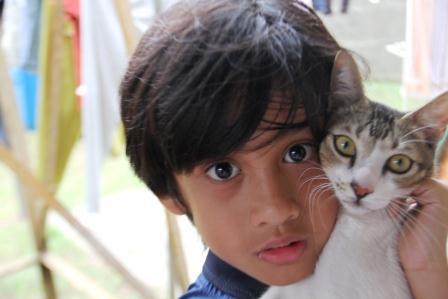 Kucing « nimadesriandani