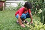 Anak Bermain Dengan Anak Mentok2
