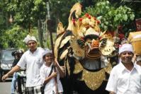 Bangli - Barong Bangkung