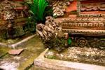 Andani - Karang Gajah3