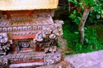 Andani - Ukiran Bali1