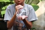Soap Bubble5