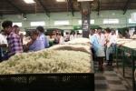 Silk Cocoon Market, Ramanagara2