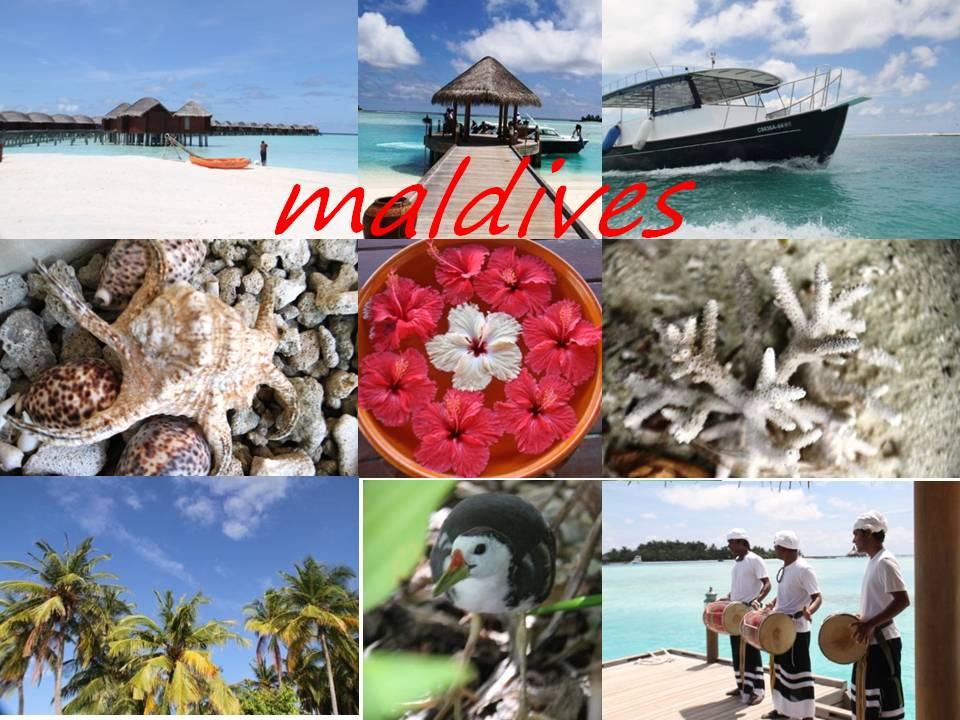 Kisah Petualangan: Menggelandang Ke Maldives I.