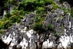 Ha Long Bay Stone Islet 11