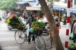Pedagang DI Hanoi 1