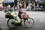 Pedagang DI Hanoi 7