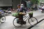 Pedagang DI Hanoi