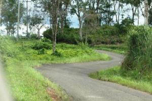 jalan berliku ke Gunung Padang