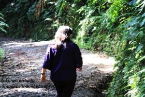 Berjalan ke Situ Gunung