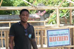 Pak Made Kanten dari Pusat Pendidikan dan Konservasi Penyu, Serangan Bali