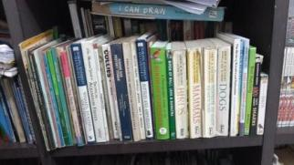 Andani- Buku