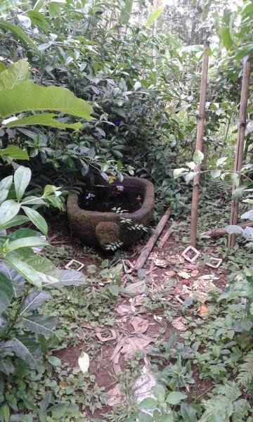 Sarcophagus di desa Adat Cekeng. Photo milik Komang Karwijaya.