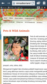 Ni Made Sri Andani -Pets & Wild Animals